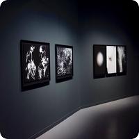 galeria_fotografica_publymarketing